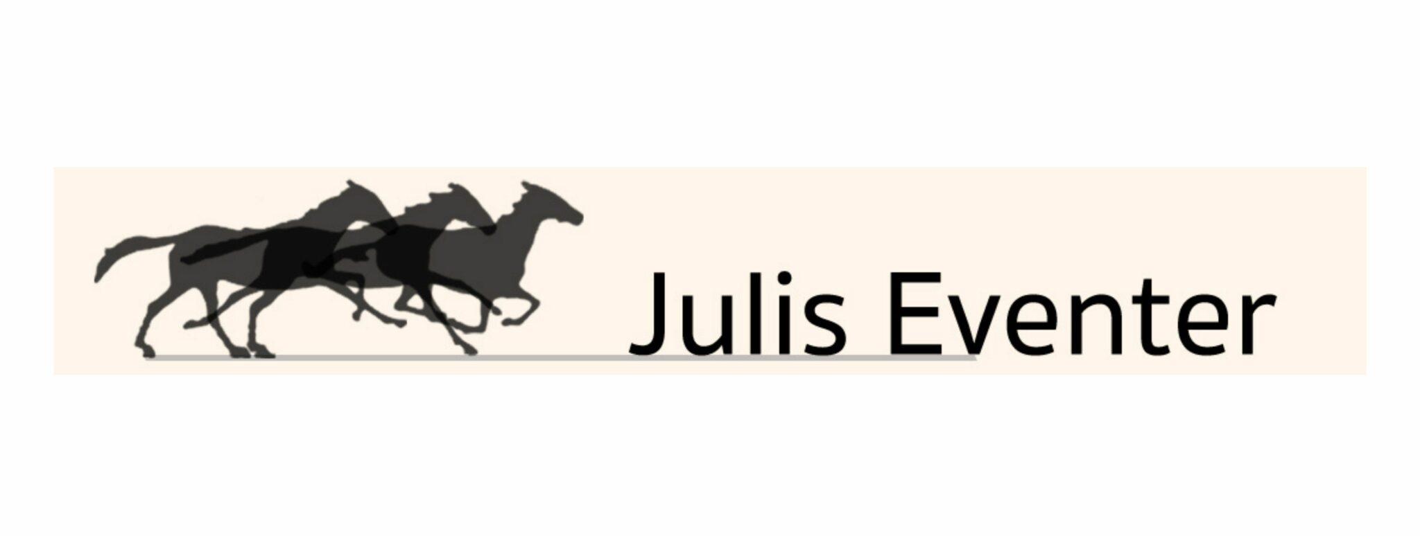 llhmedia-referenzen-übersicht-julis-eventer
